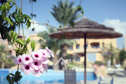 Blooming flowers in the gardens of prestigious apartments in Leptos Estates Limnaria Gardens, Paphos