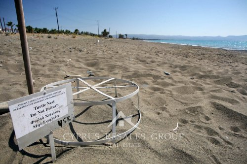 Turtle nest on the beach in Argaka, Cyprus.