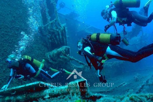 Located on the coast of Cyprus,  MS Zenobia has been rated one of the top 10 wreck dives in the world.